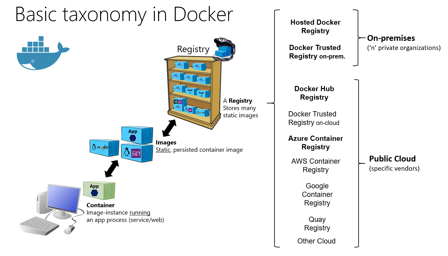 Basic Taxonomy in Docker